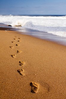 My Blog & Useful Organisations. Library Image: Footsteps in Sand